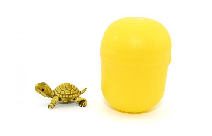 Schildkröte in klein. Farbe helloliv und Länge 28 mm