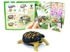 Schildkröte aus der Serie Natoons North Amerika (BPZ - VU353)